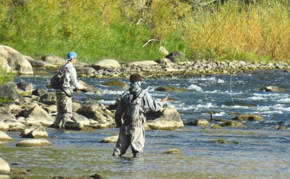 Fly fishing in the Animas