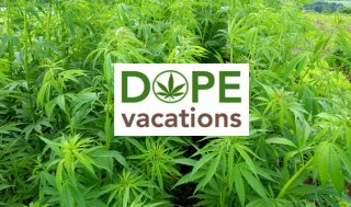 Are Pot Vacations next Big Thing?