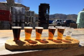 Crazy mountain beer flights
