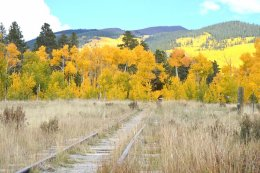 Grass expands over a railway track from 1878 at Kenosha Pass.