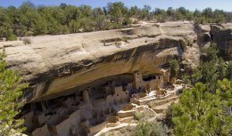 Mesa Verde nationwide Park's Ancestral Puebloan cliff dwellings