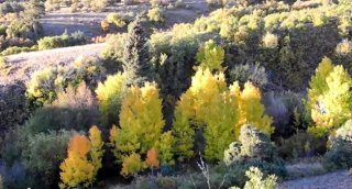 images: Ten most useful places to see Colorado fall color