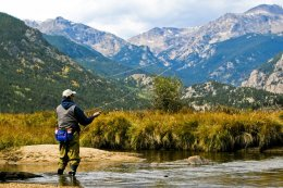 Stream fishing in Rocky Mountain National Park near Estes Park