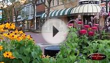 Boulder, Colorado Stock Footage ~ Grateful Dawg